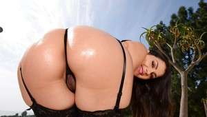 Oiled Butts Porn